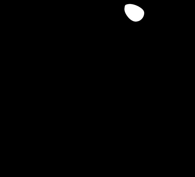 Pionniers, Cégep de Rimouski